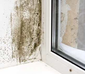Treatments for condensation Swindon