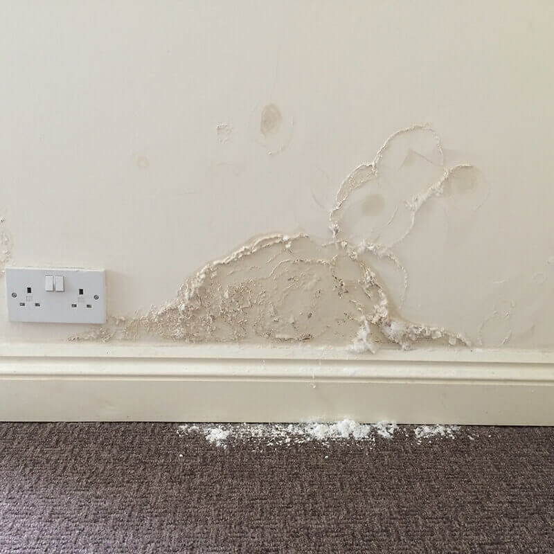 rising damp Surveys Swindon, Wiltshire