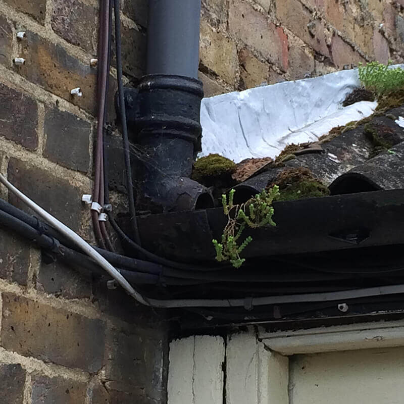 drainpipes and guttering surveyors Swindon