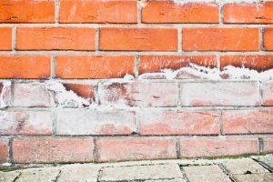 Damp proofing walls Bristol