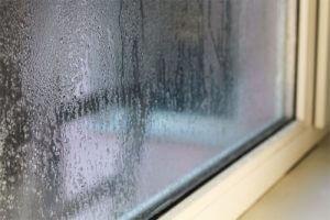 Condensation damp
