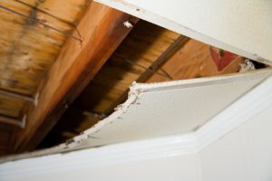Structural damp damage in ceiling